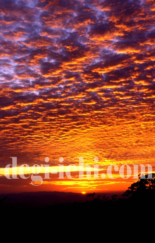 無料写真画像:風景 熱帯雨林に沈む美しい夕日(中米コスタリカ)