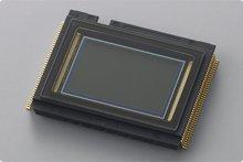 ニコン(NIKON) D3100の撮像素子
